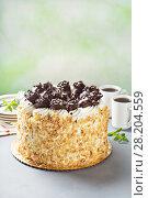 Купить «Italian cake with chocolate cannoli on top», фото № 28204559, снято 14 марта 2018 г. (c) Елена Веселова / Фотобанк Лори