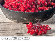 Купить «Closeup viburnum in cast iron frying pan on wooden table.», фото № 28207223, снято 18 октября 2017 г. (c) easy Fotostock / Фотобанк Лори