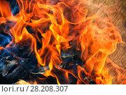 Купить «Burning birch firewood», фото № 28208307, снято 9 мая 2010 г. (c) Юрий Бизгаймер / Фотобанк Лори