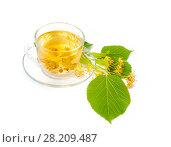 Купить «Чай из цветов липы в стеклянной чашке на белом фоне», фото № 28209487, снято 19 июля 2017 г. (c) Алёшина Оксана / Фотобанк Лори