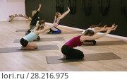 Купить «Smiling young women training yoga positions in modern yoga studio», видеоролик № 28216975, снято 14 февраля 2018 г. (c) Яков Филимонов / Фотобанк Лори