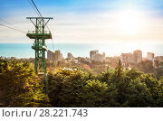 Купить «Канатная дорога в дендрарий cable car to the arboretum», фото № 28221743, снято 20 января 2018 г. (c) Baturina Yuliya / Фотобанк Лори