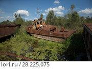 Купить «A rusting boat in Chernobyl's docks, Chernobyl Exlusion Zone, Ukraine September», фото № 28225075, снято 23 мая 2018 г. (c) Nature Picture Library / Фотобанк Лори