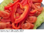Купить «Vegetable plate, various fresh vegetables are beautifully sliced», фото № 28225307, снято 8 марта 2018 г. (c) Андрей Зарин / Фотобанк Лори
