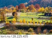 Купить «Dirty secondary road in autumn Carpathian mountain, Ukraine», фото № 28225435, снято 18 октября 2017 г. (c) Юрий Брыкайло / Фотобанк Лори