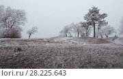 Купить «Covered with a hoarfrost mountain glade. Windy and foggy weather.», видеоролик № 28225643, снято 23 марта 2018 г. (c) Андрей Радченко / Фотобанк Лори