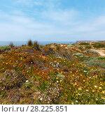 Купить «Summer Atlantic coast (Algarve, Portugal).», фото № 28225851, снято 21 мая 2016 г. (c) Юрий Брыкайло / Фотобанк Лори