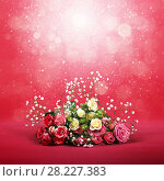 Купить «Blossom of beautiful flowers roses», фото № 28227383, снято 12 февраля 2018 г. (c) ElenArt / Фотобанк Лори