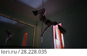 Купить «Pole dancer girl exercising and posing upside down in a studio», видеоролик № 28228035, снято 17 августа 2018 г. (c) Константин Шишкин / Фотобанк Лори