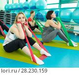 Купить «Women doing gym exercises using latex fitness bands», фото № 28230159, снято 18 февраля 2018 г. (c) Владимир Мельников / Фотобанк Лори