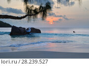 Anse Lazio beach, Seychelles islands (2011 год). Стоковое фото, фотограф Знаменский Олег / Фотобанк Лори