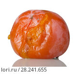 Купить «Spoiled rotten persimmon fruit isolated on white», фото № 28241655, снято 20 декабря 2017 г. (c) Сергей Молодиков / Фотобанк Лори