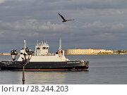 """Паром """"Адмирал Истомин"""" в Севастопольской бухте. Севастополь (2017 год). Редакционное фото, фотограф A Челмодеев / Фотобанк Лори"""