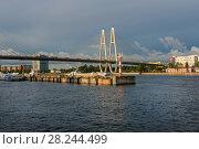 Причал Уткина заводь и Соляной причал на реке Нева, около Вантового моста, Санкт-Петербург (2017 год). Стоковое фото, фотограф Pukhov K / Фотобанк Лори
