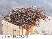 Купить «Продажа веточек вербы в Вербное воскресенье», эксклюзивное фото № 28245043, снято 1 апреля 2018 г. (c) Александр Щепин / Фотобанк Лори