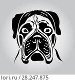 Купить «Portrait of a bullmastiff», иллюстрация № 28247875 (c) Сергей Лаврентьев / Фотобанк Лори
