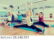 Купить «Young positive people stretching in dance hall», фото № 28248551, снято 16 декабря 2018 г. (c) Яков Филимонов / Фотобанк Лори