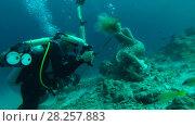 Купить «Professional underwater photographer prepares model for photo shoot in Indian Ocean», видеоролик № 28257883, снято 29 октября 2017 г. (c) Некрасов Андрей / Фотобанк Лори
