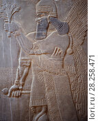 Купить «Ancient Assyria alabaster carving from the palace of King Ashur Nasipal II at Nimrud, Iraq.. In 2014 Hatra was taken over by Islamic State militants and much of the site was destroyed in 2015.», фото № 28258471, снято 22 апреля 2018 г. (c) Nature Picture Library / Фотобанк Лори
