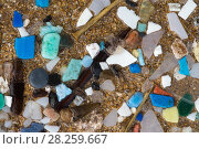 Купить «Marine microplastics (particles with upper size limit of 5mm) washed up on a beach in  Pembrokeshire, Wales, UK. January.», фото № 28259667, снято 22 апреля 2018 г. (c) Nature Picture Library / Фотобанк Лори