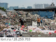 Купить «Marine pollution on beach at Jakarta Harbour, Indonesia. October.», фото № 28259703, снято 23 мая 2019 г. (c) Nature Picture Library / Фотобанк Лори