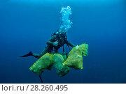 Купить «Scuba diver removing plastic marine litter from the sea bed.  Mljet National Park, Mljet  Island, Croatia. May 2015.», фото № 28260495, снято 27 апреля 2018 г. (c) Nature Picture Library / Фотобанк Лори