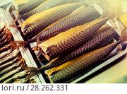 Купить «Cured mackerel and other fish in supermarket», фото № 28262331, снято 17 февраля 2020 г. (c) Яков Филимонов / Фотобанк Лори