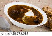 Купить «Thick sour soup», фото № 28273615, снято 18 октября 2018 г. (c) Яков Филимонов / Фотобанк Лори