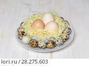 Купить «Яйца куриные и перепелиные на блюде», фото № 28275603, снято 7 апреля 2018 г. (c) Ирина Носова / Фотобанк Лори