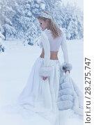 Купить «Snow Queen», фото № 28275747, снято 4 февраля 2018 г. (c) Дмитрий Черевко / Фотобанк Лори