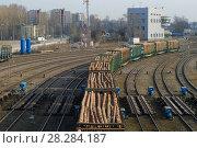 Вагоны груженные лесом на железнодорожных путях сортировочной станции (2018 год). Редакционное фото, фотограф Виктор Карасев / Фотобанк Лори