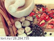 Купить «various natural spices with pestle and mortar», фото № 28284735, снято 28 ноября 2010 г. (c) Яков Филимонов / Фотобанк Лори