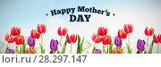 Купить «Composite image of mothers day greeting», фото № 28297147, снято 16 января 2019 г. (c) Wavebreak Media / Фотобанк Лори
