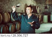 Купить «Wine expert checking quality of red wine», фото № 28306727, снято 22 сентября 2016 г. (c) Яков Филимонов / Фотобанк Лори