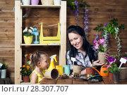 Купить «Mom and children are planting flowers», фото № 28307707, снято 14 апреля 2018 г. (c) Типляшина Евгения / Фотобанк Лори