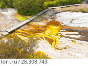 Купить «Colourful silica terrace formed by hot water algae growing in the geothermal area of Orakei Korako (The Hidden Valley), Northern Island, New Zealand», фото № 28308743, снято 26 мая 2019 г. (c) BE&W Photo / Фотобанк Лори