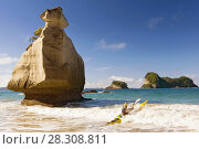 Купить «Kayak on Beach, Hahei, Coromandel Peninsula, North Island, New Zealand», фото № 28308811, снято 14 декабря 2019 г. (c) BE&W Photo / Фотобанк Лори