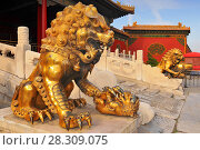 Купить «Guardian Lions in front of The Three Great Halls Palace. Forbidden City. Beijing. China.», фото № 28309075, снято 16 июня 2019 г. (c) BE&W Photo / Фотобанк Лори