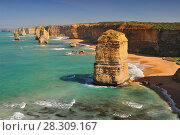 Купить «View of the stacks that comprise the Twelve Apostles, one of the main attractions of the Port Campbell National Park. Great Ocean Road, Victoria State, Australia.», фото № 28309167, снято 22 апреля 2019 г. (c) BE&W Photo / Фотобанк Лори