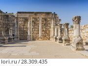 Купить «Ruins of the old synagogue in Capernaum by the Sea of Galilee, Israel», фото № 28309435, снято 24 октября 2018 г. (c) BE&W Photo / Фотобанк Лори