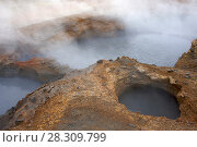 Купить «Hot springs at Hveragerdi, Iceland, September 2009. Photographed for the Freshwater Project.», фото № 28309799, снято 16 июля 2018 г. (c) Nature Picture Library / Фотобанк Лори