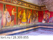 Купить «Villa of Mysteries, Interior with antique fresco, Pompei, Italy», фото № 28309855, снято 17 июля 2018 г. (c) BE&W Photo / Фотобанк Лори