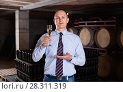 Купить «Confident winemaker offering glass of white sparkling wine for tasting in wine cellar», фото № 28311319, снято 22 января 2018 г. (c) Яков Филимонов / Фотобанк Лори