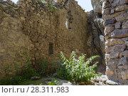 Купить «Скальная крепость в посёлке Дзивгис, Республика Северная Осетия - Алания», фото № 28311983, снято 16 июля 2017 г. (c) Ирина Носова / Фотобанк Лори