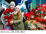 Купить «Girl with woman choosing Christmas gifts for family», фото № 28316463, снято 19 декабря 2017 г. (c) Яков Филимонов / Фотобанк Лори