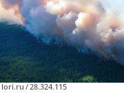 Купить «Лес горит, вид сверху», фото № 28324115, снято 12 июля 2007 г. (c) Владимир Мельников / Фотобанк Лори