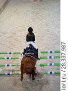 Купить «Young child girl rider jumping on the horse over obstacle at show jumping competition», фото № 28337987, снято 24 апреля 2018 г. (c) Константин Шишкин / Фотобанк Лори
