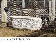 Мраморная ванна в собственном садике Фермерского дворца. Петергоф, Санкт-Петербург (2018 год). Редакционное фото, фотограф Александр Щепин / Фотобанк Лори