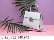 Купить «Female leather bag», фото № 28340943, снято 24 апреля 2018 г. (c) Andriy Bezuglov / Фотобанк Лори