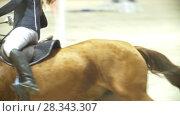 Купить «Young woman on the black stallion jumping over hurdle at show jumping competition», видеоролик № 28343307, снято 6 августа 2020 г. (c) Константин Шишкин / Фотобанк Лори